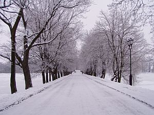 Winter scenery in Nyazvizh